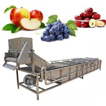 Máquinas de Lavar Frutas e Legumes Industriais